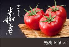 東京市場で最高の値がつく、糖度・酸味・食味のバランスがとれた「光樹とまと」