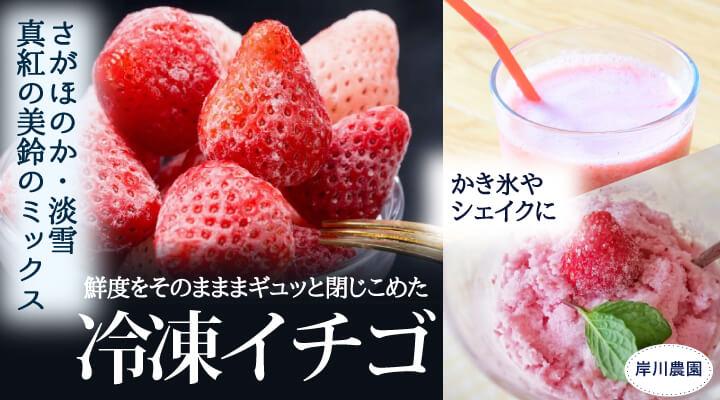 岸川農園冷凍イチゴ