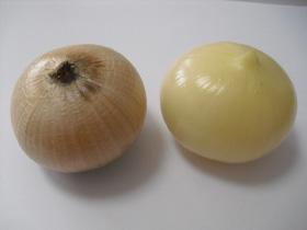 garlic-pic04