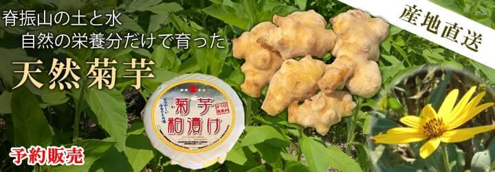 天然菊芋 菊芋粕漬け 産地直送