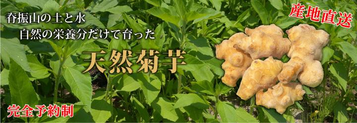 菊芋・菊芋粉末