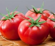 cate-tomato190
