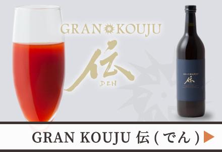 GRAN KOUJU「伝」
