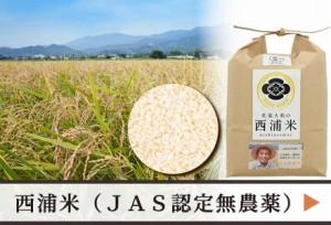 西浦米 無農薬JAS認定コシヒカリ