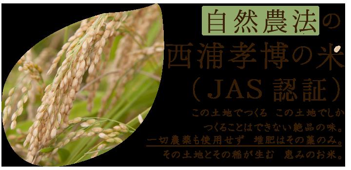 自然農法の西浦孝博の米
