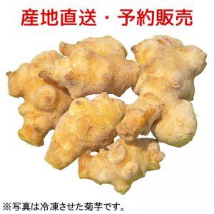 泥付き生菊芋 5kg
