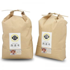 減農薬 コシヒカリ白米 10kg