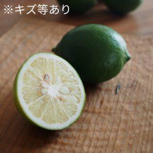 有機マイヤーレモン
