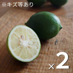 有機マイヤーレモン(傷等あり)