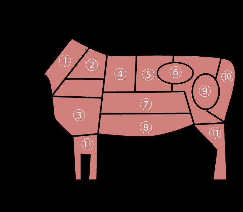 牛肉部位 イメージ画像